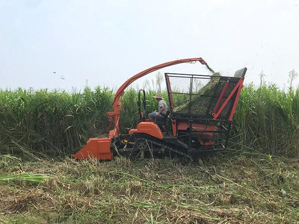 沃工农机青贮饲料收获机合作客户之山东犇牛畜牧机械公司
